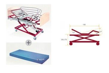 Alquiler cama articulada carro elevador